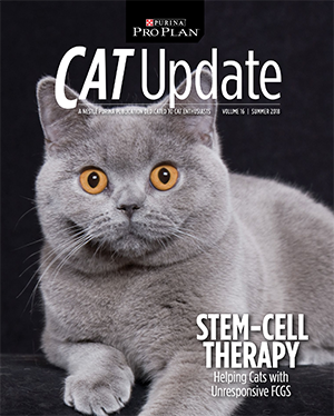 STEM-CELL THERAPY MAY HELP CAT